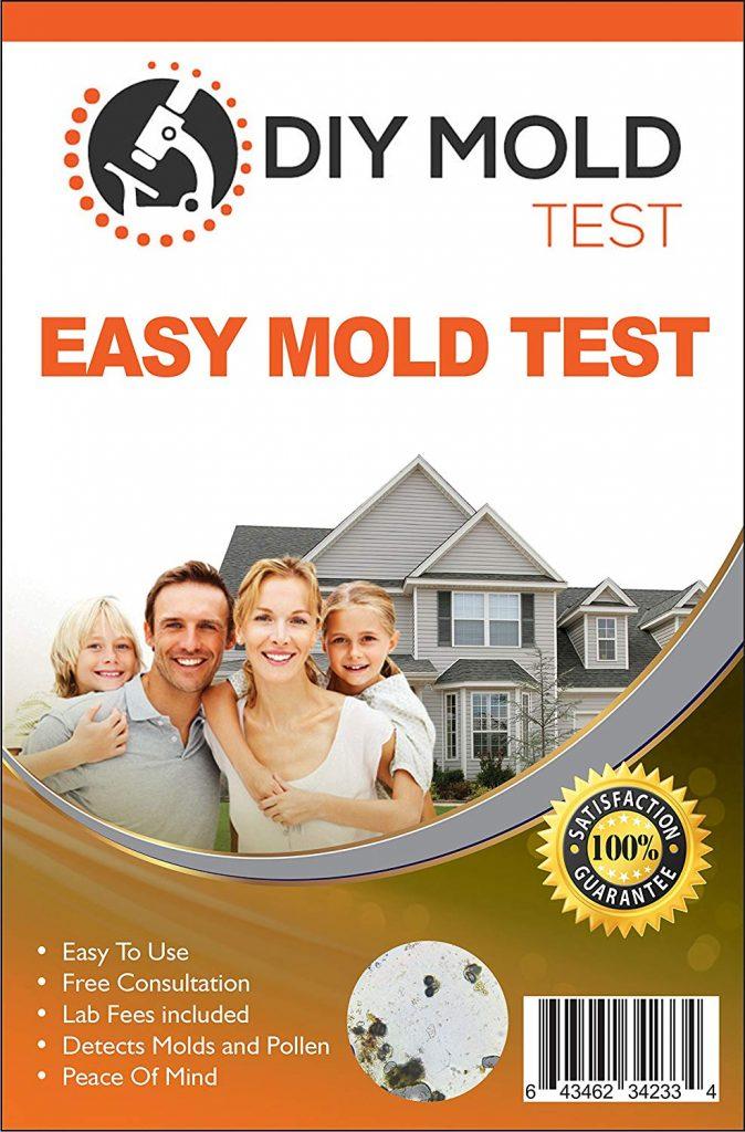 Best Mold Test Kit